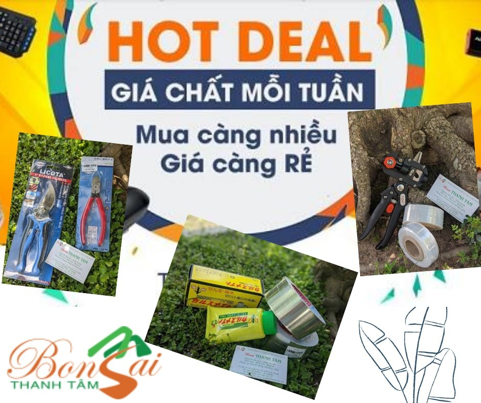 dung-cu-cham-soc-cay-canh-gia-re-ho-chi-minh